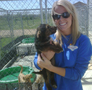Jordan Tyler, an ASU psychology and counseling major, pitches in with puppy care at the Northeast Arkansas Humane Society.
