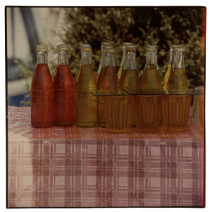 "Robert Rauschenberg's photographic print, ""Study for a Chinese Summerhall (Bottles), 1983"" will be on display at ASU's Bradbury Gallery on Thursday, March 12, at 5 p.m."