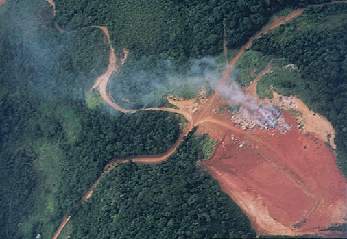 An aerial picture of deforestation, due to gold mining, in the South American jungle. Environmental issues like deforestation require the interaction of different disciplines to analyze the problems and find possible solutions to them. Photograph by Aldemaro Romero.