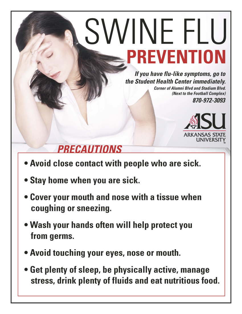 prevention from flu essay