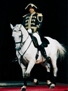 The world-famous Lipizzan stallions will appear at the Convocation Center.